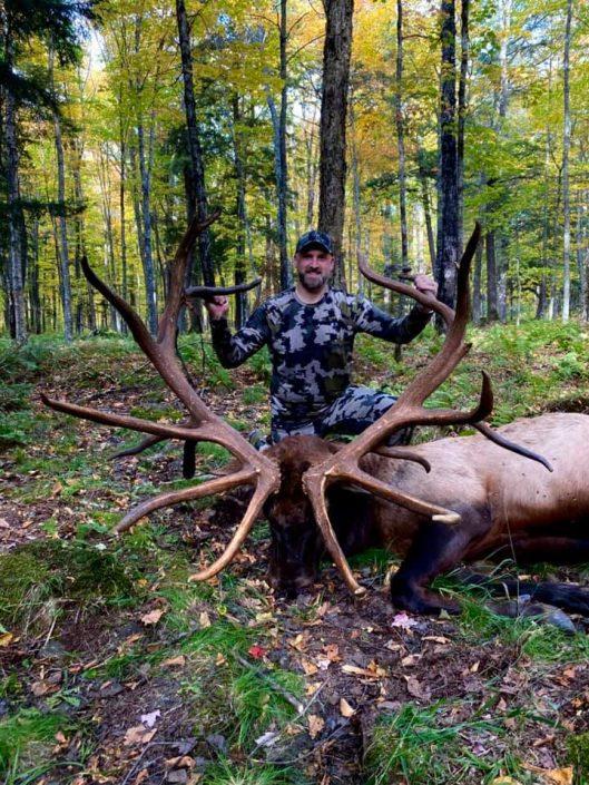 Trophy bull hunt