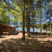 bear cabin outside