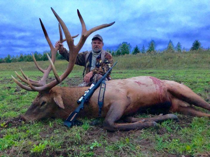 Todd Elk