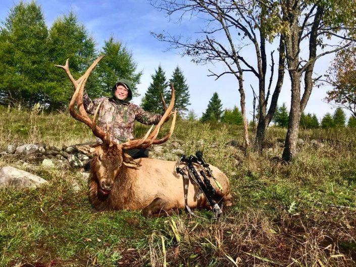 Todd Elk 2