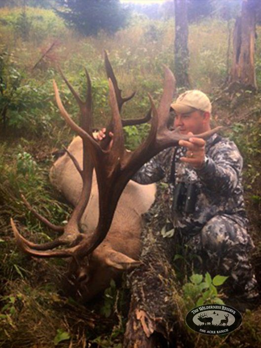Awesome Elk Trophy from Guided Hunt
