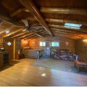 wide shot bear cabin