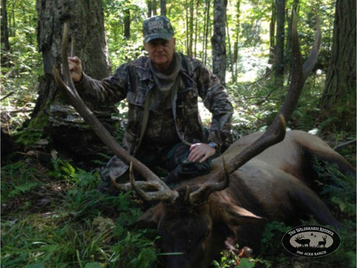 Guided Elk Hunt Northern Wisconsin