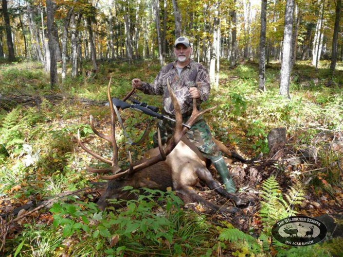 Guided Trophy Elk Hunt Northern Wisconsin
