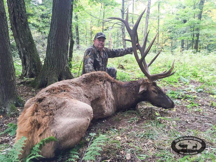 Trophy Elk Hunt | The Wilderness Reserve